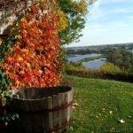Herbst in Havelberg
